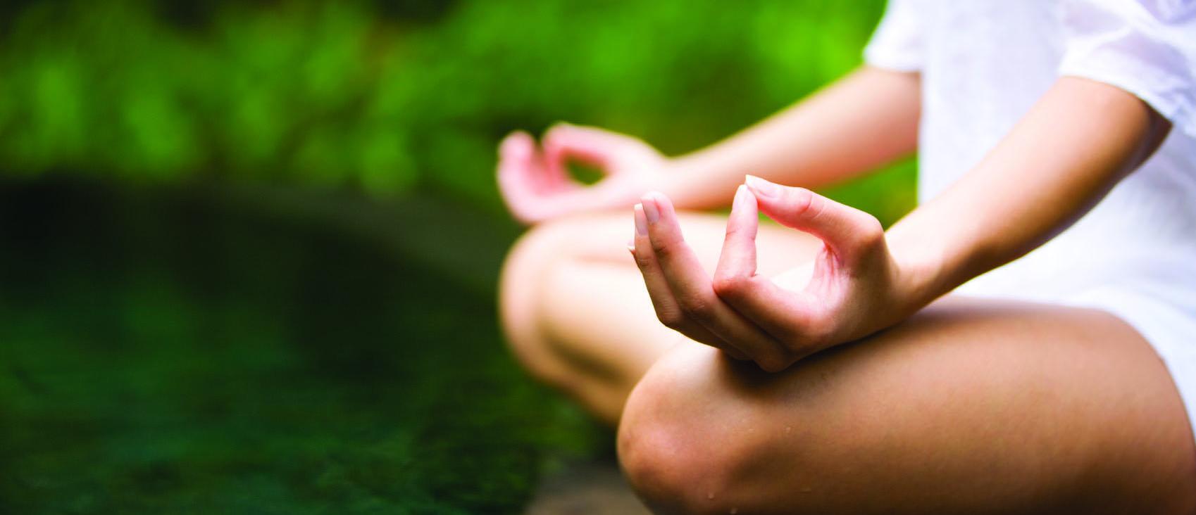 Terapias alternativas, meditación y medicina China - Tao Vital Granada
